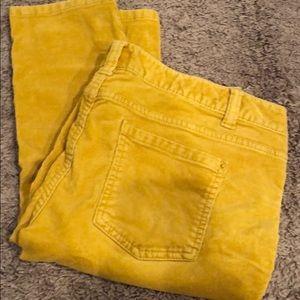 Yellow skinny cords